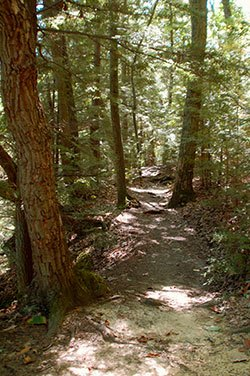 Approximately 30 miles of trails are available to riders. Many are well shaded and hilly with shallow creek crossings.